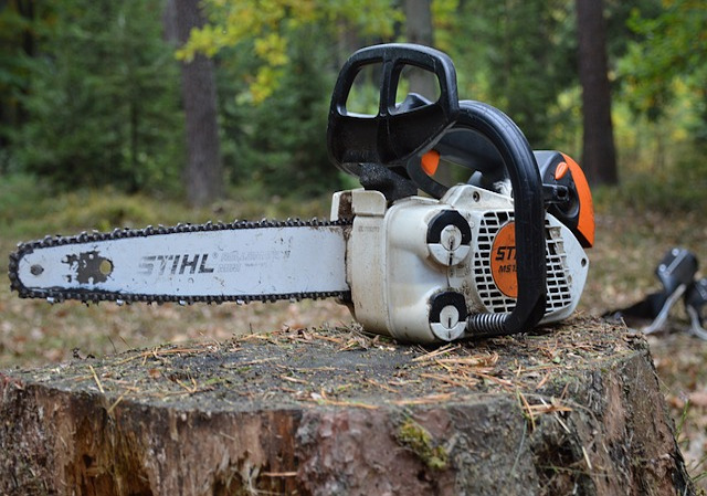 Garden Tools, Chainsaws